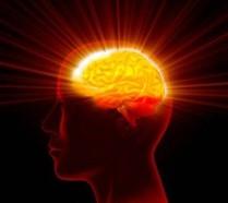 Leverage Your Beautiful Brain- 8 Success Strategies
