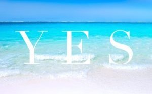 Learn to Say NO, So You Can Say YES